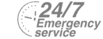 24/7 Emergency Service Pest Control in Beddington, SM6. Call Now! 020 8166 9746